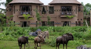 Mara-River-Safari-Lodge-41
