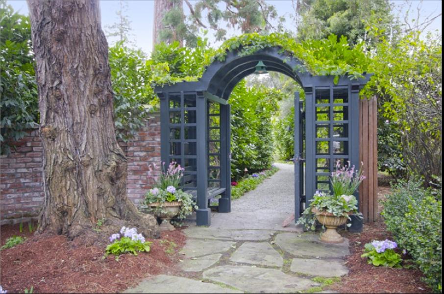 Salah satu pintu masuk dirancang sangat cantik, dengan pengaplikasian pergola besi dan tumbuhan merambat diatasnya.