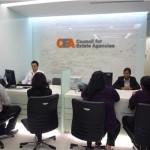 CEA reception resize