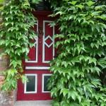 Padu Padankan Warna Merah di Rumah ala Feng Shui