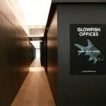 Glowfish offices