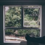 7 Jenis Jendela untuk Rumah Modern Minimalis