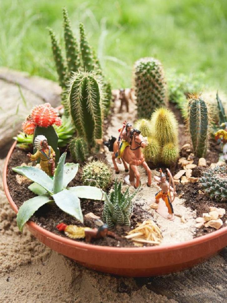 6 Langkah Mudah Menanam Kaktus Di Pot Mungil Rumah Dan