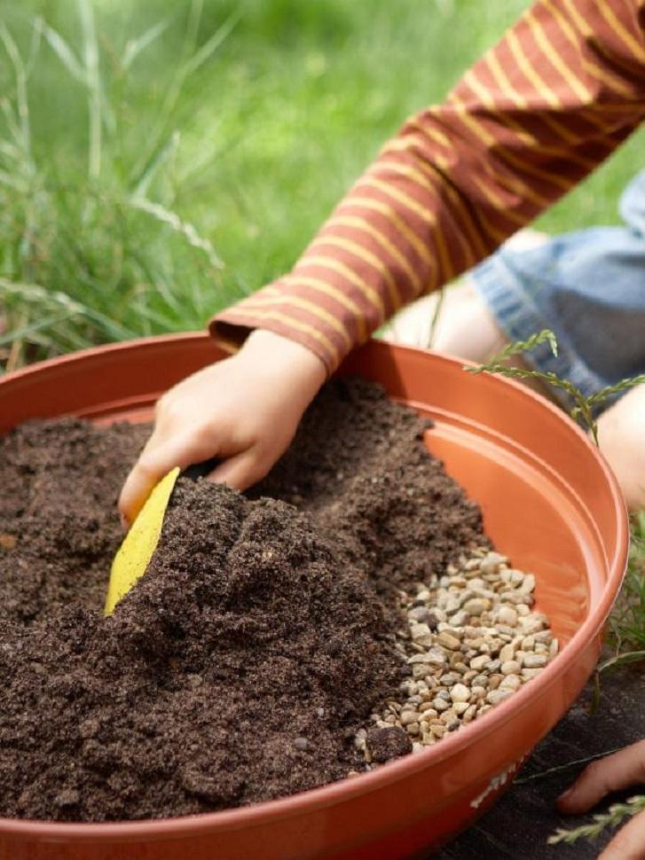 6 Langkah Mudah Menanam Kaktus Di Pot Mungil Rumah Dan Gaya