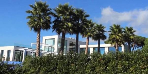 Di area rumah Lorenzo ditumbuhi tanaman Palm yang tampak hijau (homemydesigning.com)