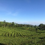 Analisa Bandung Timur dan Selatan