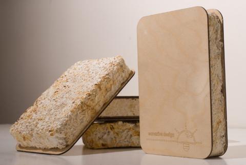 Dinding terbuat dari jamur (sumber: cittymetric.com)