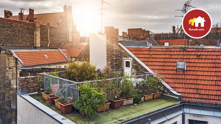 taman di atap rumah