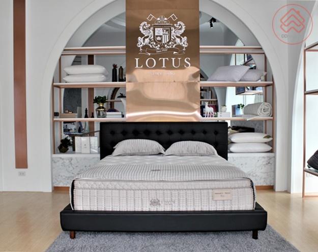 Lotus Sleep Studio_8