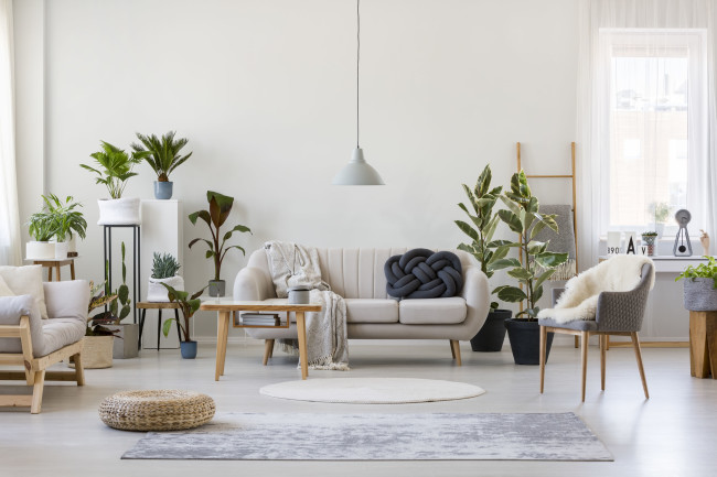 More developers want to venture into co-living