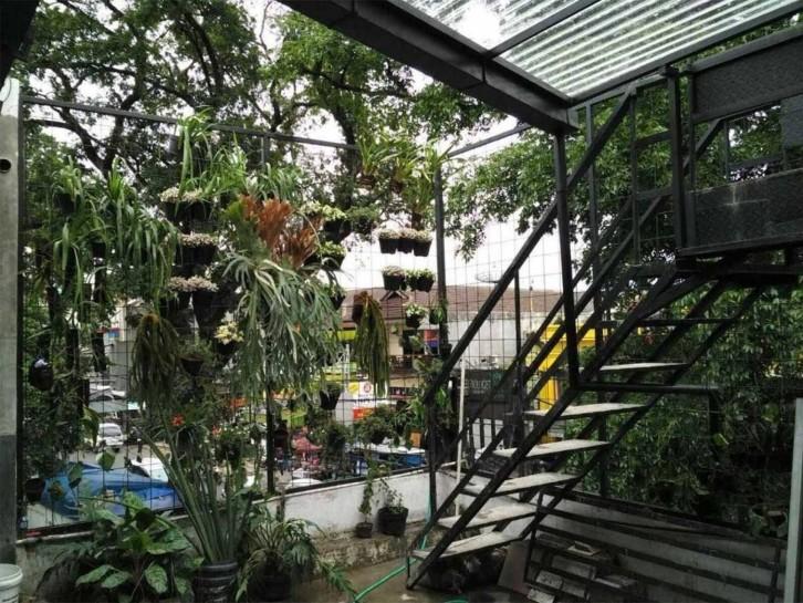 Ini 5 Inspirasi Desain Kebun Sayur Di Rumah Rumah Dan Gaya Hidup Rumah Com