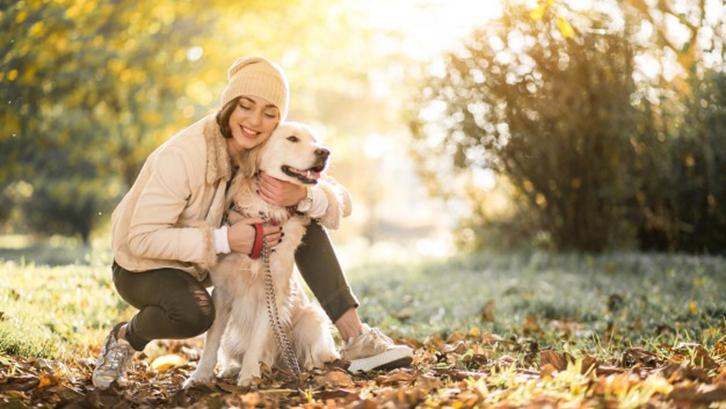 hewan peliharaan di rumah Meningkatkan kesehatan mental