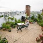 Manfaatkan Atap Rumah Jadi Kebun - FIMG