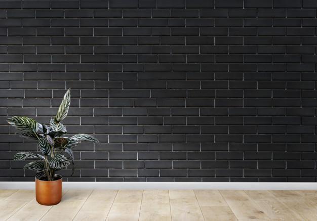Warna baru pada dinding