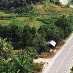Ribuan Kilometer Jalan Perbatasan Negara Dibangun, Manfaatnya Bukan Hanya Aksesibiltas