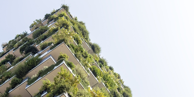 The introduction of green ratings to measure building