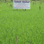 Kementerian ATR/BPN-Kemenag Akan Integrasikan Data Tanah Wakaf