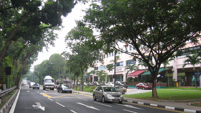Smaller walk-up apartments are common along Bukit Timah Road.