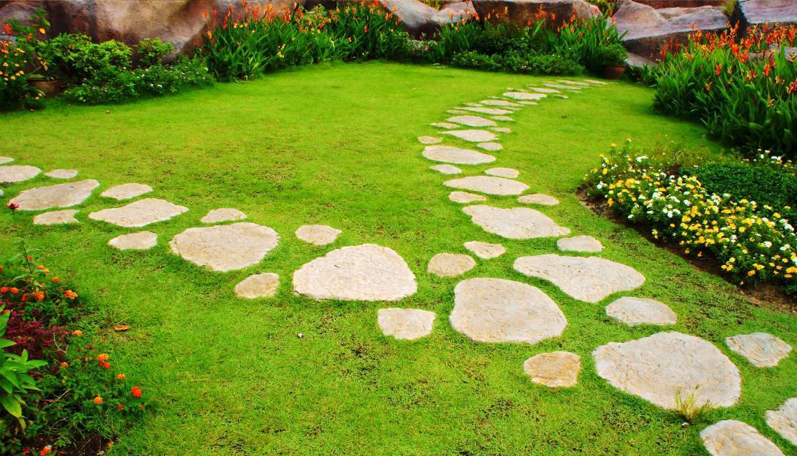 Cara Mudah Membuat Taman Minimalis di Lahan Sempit
