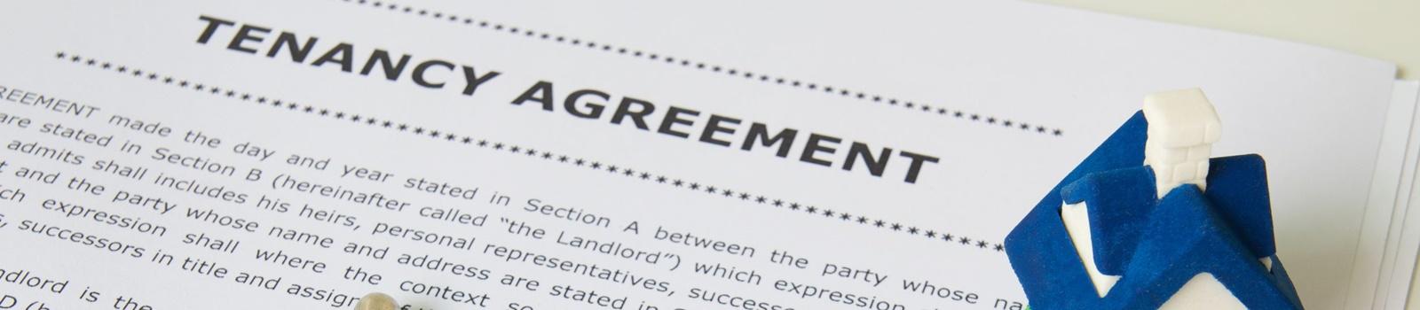 rent house, rent room, tenancy agreement, property