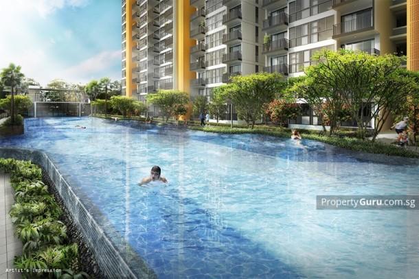 Westwood Residences Executive Condominium Swimming Pool / 10 best condominium pools