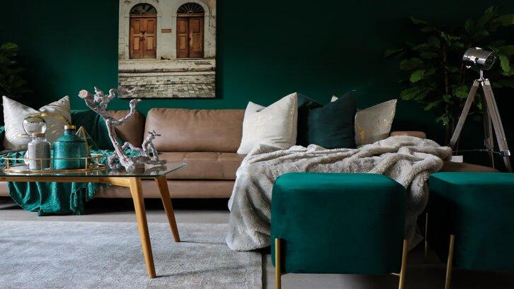 Warna hunter green memberi sensasi nyaman bagi mata. (Foto: Devon Janse van Rensburg-Unsplash)