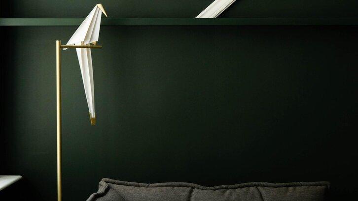 Warna hijau tua akan menghasilkan kesan yang menawan. (Foto:Aaina Sharma on Unsplash)