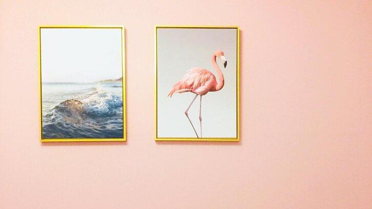 Warna pink muda yang membuat ruangan tampak terang. (Foto: Dan 7th on Unsplash)
