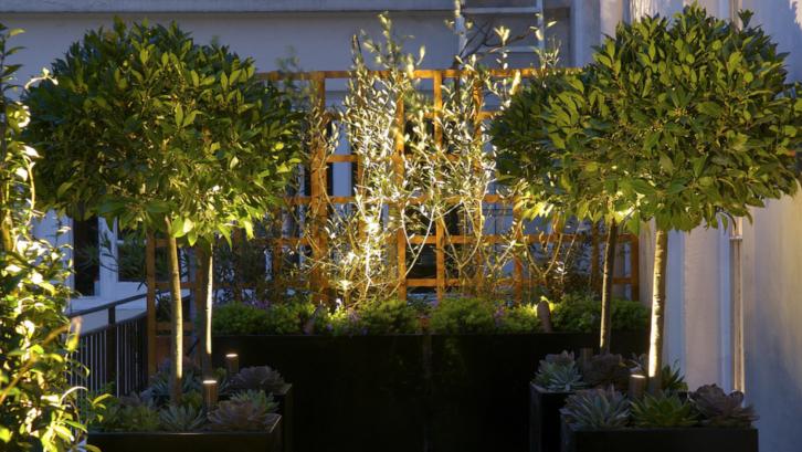 Anda bisa menata taman depan rumah dengan pencahayaan tepat agar bisa dinikmati juga di malam hari. (Foto: John Cullen Lighting)