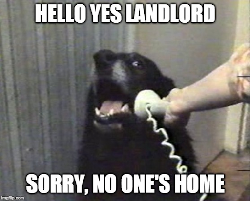 no-rent-landlord-enter3