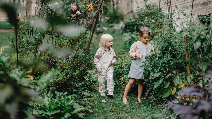 Taman belakang rumah minimalis untuk menambah keasrian hunian. (Foto: Pexels-Allan Mas)