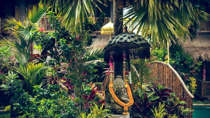 Contoh inspirasi taman bergaya Bali. (Foto: Pexels-Artem Beliaikin)