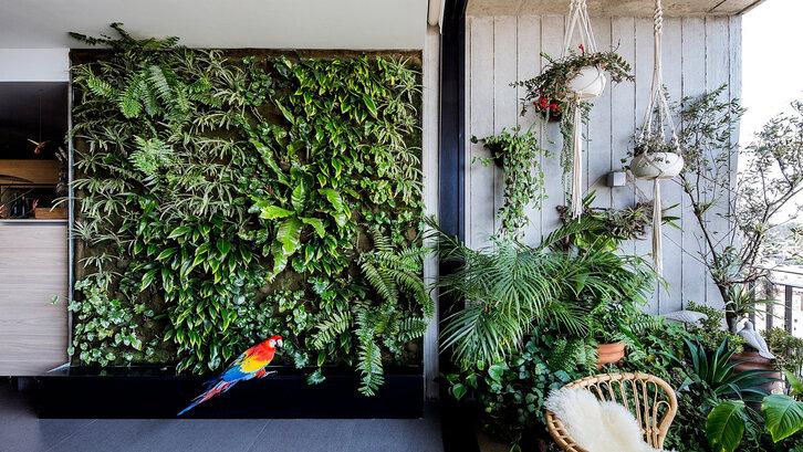 Pastikan taman indoor mendapat sinar matahari yang cukup dan memiliki sirkulasi udara yang baik (Foto: apartmenttherapy.com)