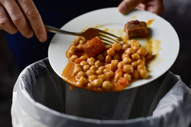Food waste contributes greatly to pest infestations - PropertyGuru Singapore