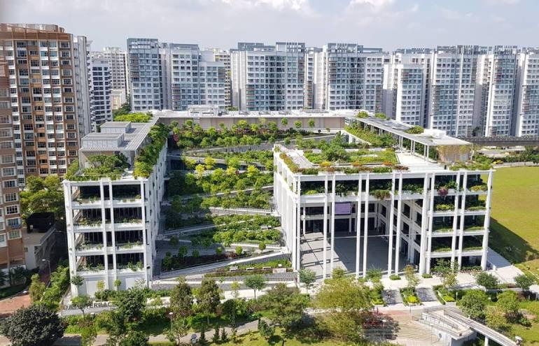 Oasis-Terraces-PropertyGuru-Singapore