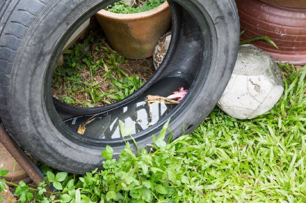 Water pooling in old tyres are a common breeding ground for mosquitoes - PropertyGuru Singapore