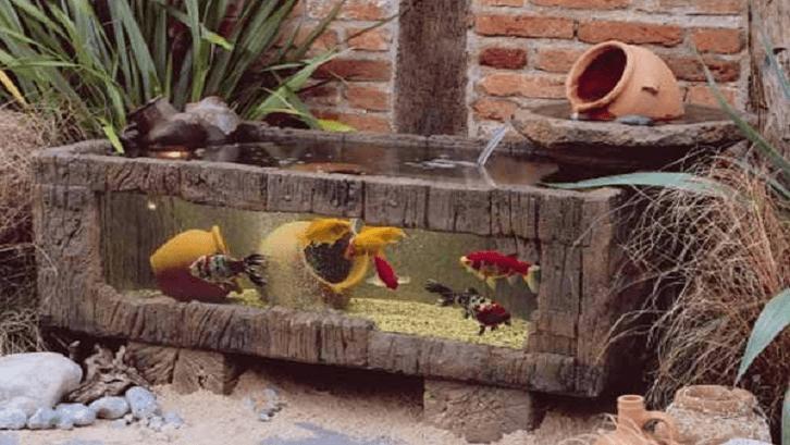 Model akuarium bisa menghemat tempat. (Foto: Woohome)