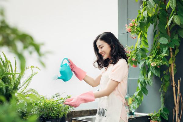 eco-friendly, eco-friendly house, eco friendly
