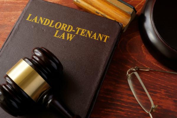 Strata Management Act 2013, Strata Management Tribunal, maintenance fees, sinking fund, tenancy agreement, landlord, tenant