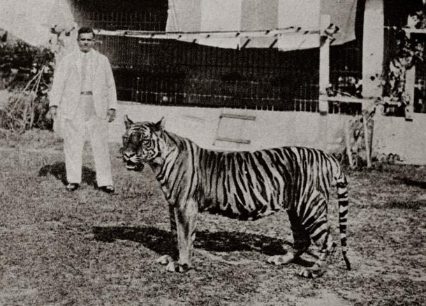 Punggol Zoo history