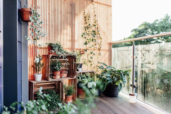 Balcony Garden, Garden plants in Malaysia, Balcony Garden Ideas, Balcony Garden Idea, Garden in the sky, Balcony design, Planters, Sky garden, garden plants, small garden, garden design plans, garden design