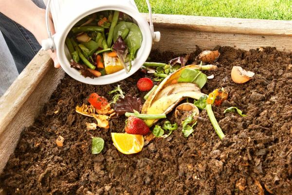 model rumah hijau, konsep rumah hijau, rumah hijau, mesra alam, bekas makanan mesra alam, produk mesra alam