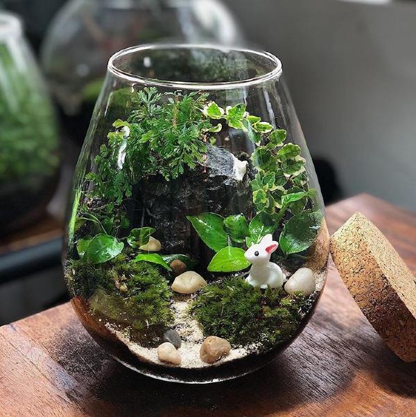 shops-deliver-plants-10 (1)