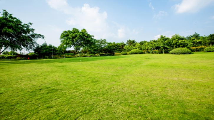 Modal yang Dibutuhkan dalam Investasi Tanah
