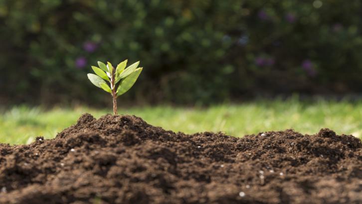 Tidak perlu terburu-buru dalam memilih lokasi tanah sebagai investasi properti Anda. (Foto: Freepik.com)