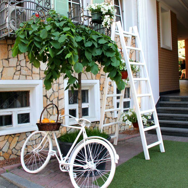 Percantik tangga di teras rumah dengan menambahkan tanaman sebagai aksen taman minimalis di sekitarnya. (Foto: Pexels)