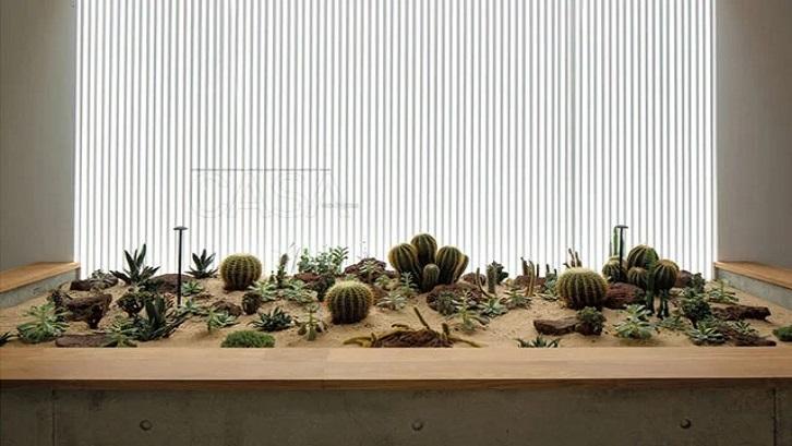Membuat taman minimalis di dalam rumah memberikan tantangan bagi Anda dalam mendesainnya. (Foto: Casaindonesia.com)