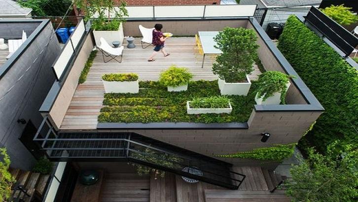 Ganti lahan untuk menjemur pakaian di atap menjadi taman minimalis yang cantik. (Foto: Ruparupa.com)
