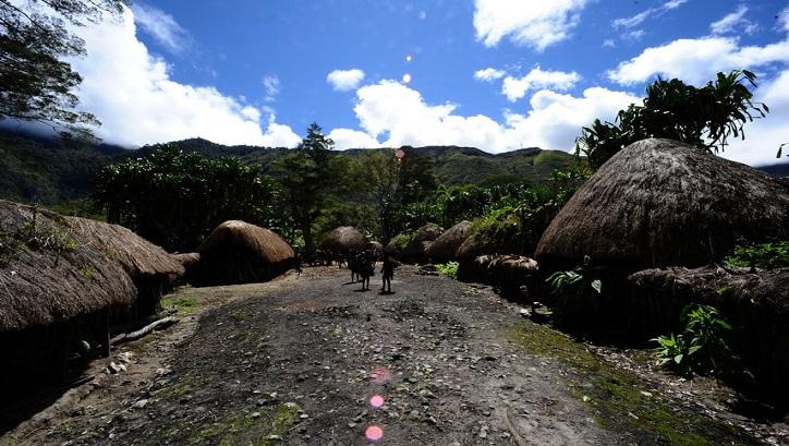 Mengenal Honai Rumah Adat Papua Rumah Com