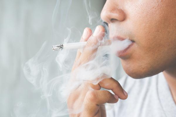 smoker-house-2